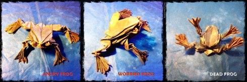 worried-frog